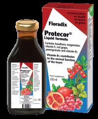 Power Health Floradix Protecor 250ml