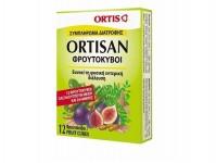 Ortis Ortisan Φρουτοκυβοι 12 Τεμαχια
