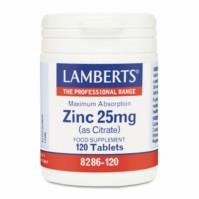 Lamberts Zinc 25Mg 120 Tabs